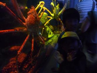 深海水族館②.JPG